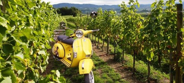 Image for Riding a vespa scooter in Chianti - how to know Tuscany from another point of view